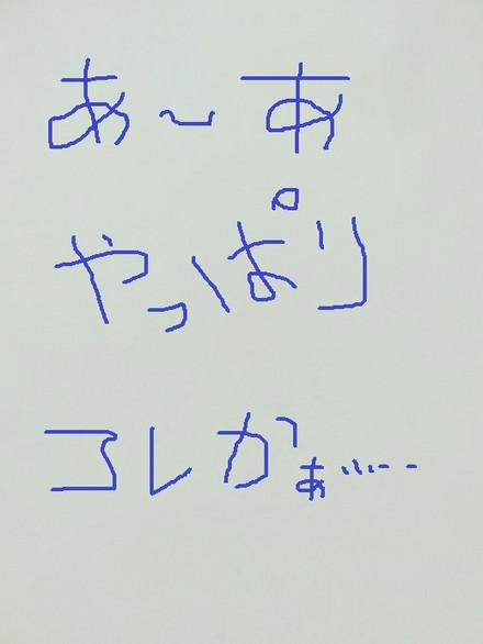 Img_0509_2