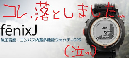 Garmin3_2